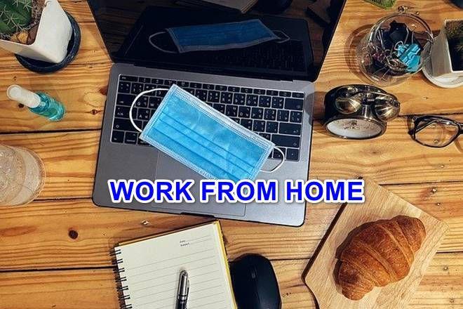 COVID-19: 14 BEST homework for beginners