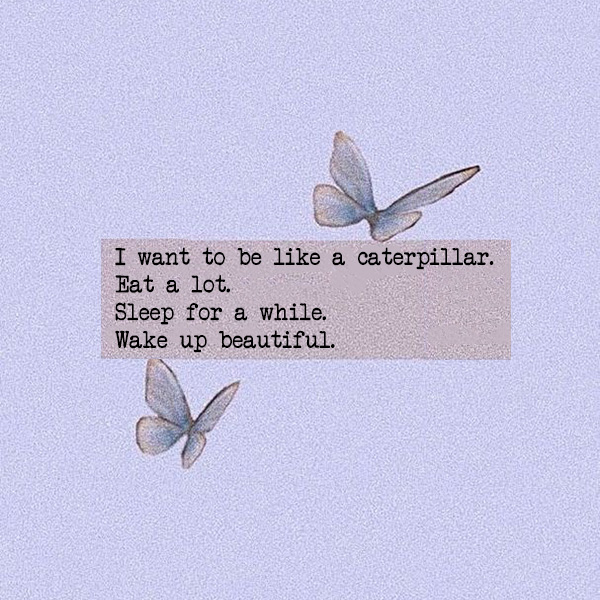 I want to be like a caterpillar. Eat a lot